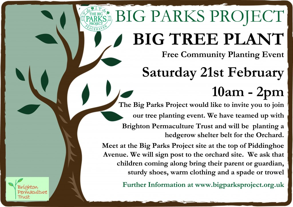 Big Tree Plant Flyer copy